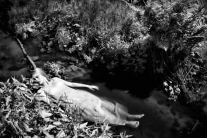 """""""Pod powierzchnią""""; modelka: Ewelina Walczak; make-up i stylizacja: moje; asystowała: Natalia Skrzynecka"""
